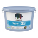 CAPATECT FINITION SYLITOL GRESE R20